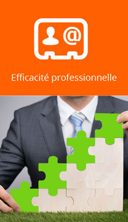 efficacite-professionnelle-formation-brynod